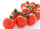 390651_090519110848_Cherry_Tomatoes5